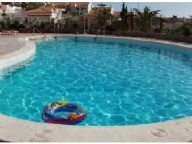 Pool - Apartment in Costa Adeje, San Eugenio, Tenerife