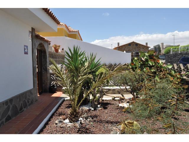 Los Cisnes - El Medano-Tenerife -Garden - Los Cisnes, El Medano, Tenerife